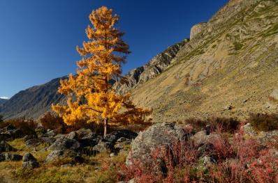 Экспедиция в Восточный Казахстан